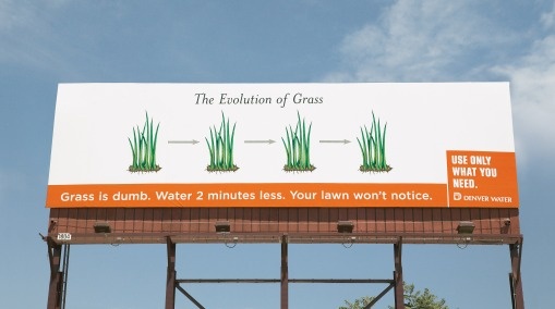 DW-Evolution-Grass